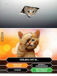 Ceiling Cat Meme - ceiling cat is fixing the eating a antenna cheezburger watching