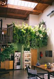 Interior Garden Design Ideas by I Love Bringing Nature Indoors With Houseplants It Would Be Kind