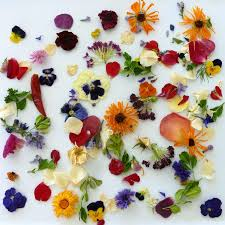real petals flowers wedding confetti craft supply flower petals