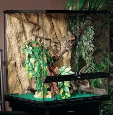 exo terra medium natural terrarium reptile habitats