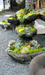 desert garden ideas photos