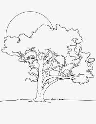 oak tree in the night colouring page happy colouring