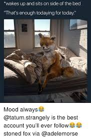 Stoned Fox Meme - 25 best memes about stoned fox stoned fox memes