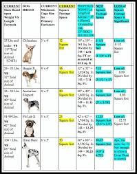 australian shepherd size chart update vermont gov scott signs hsus bill to cut puppy mill cage