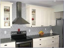 Blue Gray Glass Tile Backsplash Tiles  Home Design Ideas - Gray glass tile backsplash