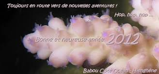 Poubelle Babou by