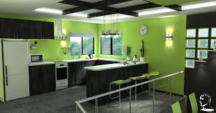 Green Kitchen Designs Contemporary Kitchen Design With Colorful Green Lime Kitchen