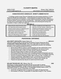 level hr job resume