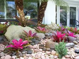 Rock Garden Florida Gardening South Florida Style Bromeliads In The Garden