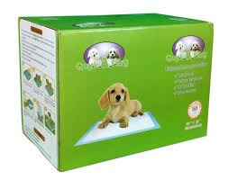 Dog Peed On Bed Best 25 Dog Pads Ideas On Pinterest Indoor Dog Potty Puppy
