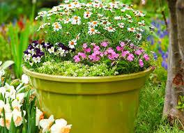 Grass For Backyard Ideas Backyard Landscape Ideas 8 Lawn Less Designs Bob Vila