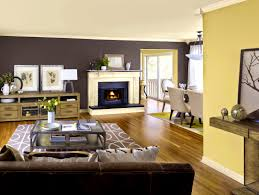 apartments prepossessing accent wall color ideas for living