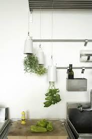 cuisine pratique et facile 30 luxe plante interieur avec cuisine pas chere photos