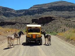 blue green jeep colorado river jeep ride peach springs az where are sue u0026 mike