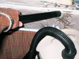 Vaccumming Should You Be Vacuuming For Bed Bugs Pct Pest Control Technology