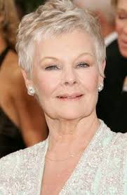 how to get judi dench hairstyle cele mai bune 25 de idei despre judi dench hairstyle pe pinterest
