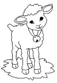 sheep coloring pages preschool preschool kindergarten