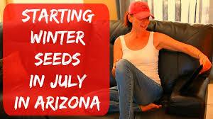 how to plant tomato u0026 pepper seeds indoors arizona desert