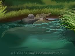 land ducky weisseedelweiss deviantart