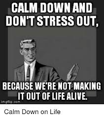 calm down and don t stress out because were not making it out of