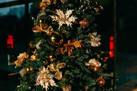 christmas tree flower lights free images branch flower home red holiday decor christmas