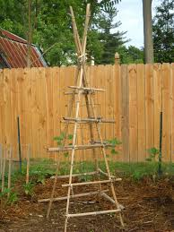 how to build a green bean teepee trellis mother2motherblog