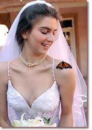live butterflies for your event butterfly weddings butterfly