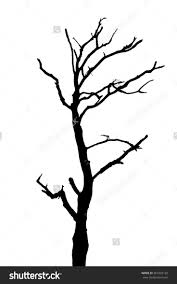 White Oak Tree Drawing 22 Best Tree Silhouette Images On Pinterest Tree Silhouette