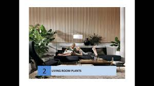 Decorate Livingroom Best Plants To Decorate Living Room Youtube