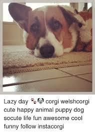 Lazy Day Meme - lazy day corgi welshcorgi cute happy animal puppy dog socute