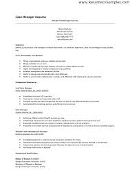 Lead Resume Case Manager Sample Resume Resume Templates Project Manager