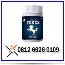 jual forex asli obat pembesar alat vital terkini jual forex asli