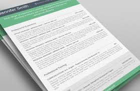Copy Of Resume Template Resume Template 110380 Resumeway