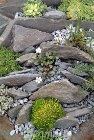 chic simple rock garden ideas rock landscape design interior