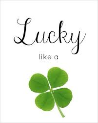 108 best st patrick u0027s day images on pinterest patrick o u0027brian