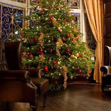 buy christmas tree buy fraser fir christmas tree with lights new orleans local