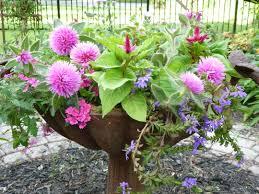 The Summer And Winter Garden - enjoying the summer garden