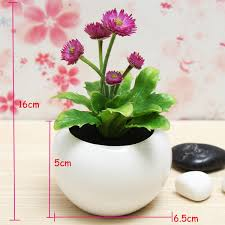 Best Plant For Office Desk Awesome Office Desk Plant Hostgarcia Greenvirals Style