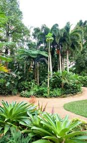 Cairns Botanic Gardens Cairns Botanic Gardens 2018 All You Need To Before You Go