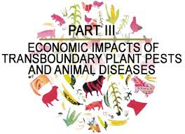 Diseases In Plants And Animals - the state of food and agriculture 2001