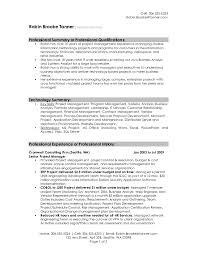 professional resumes exles pleasant sle resumes for professionals with professional summary