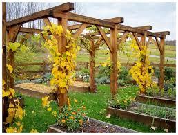 swing arbor plans grape arbor with swing plans outdoor waco grape arbor plans ideas