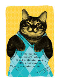 cat sweater cat sweater birthday birthday card cardstore