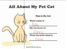 pets theme 123 play and learn child care basics resources