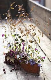 chambre d h e romantique 51 best idée jardin images on backyard patio garden