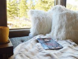 Pottery Barn Fur Blanket Warm And Cozy Scout Studiosscout Studios