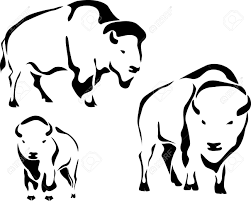 outline bison clipart cliparts and others art inspiration