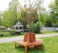 bench tree benches miramar half circle tree bench foreverredwood
