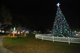 largo central park christmas lights christmas in the sun wander the map