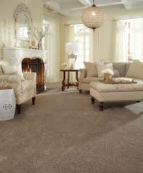 45 best tuftex stainmaster carpet images on pinterest area